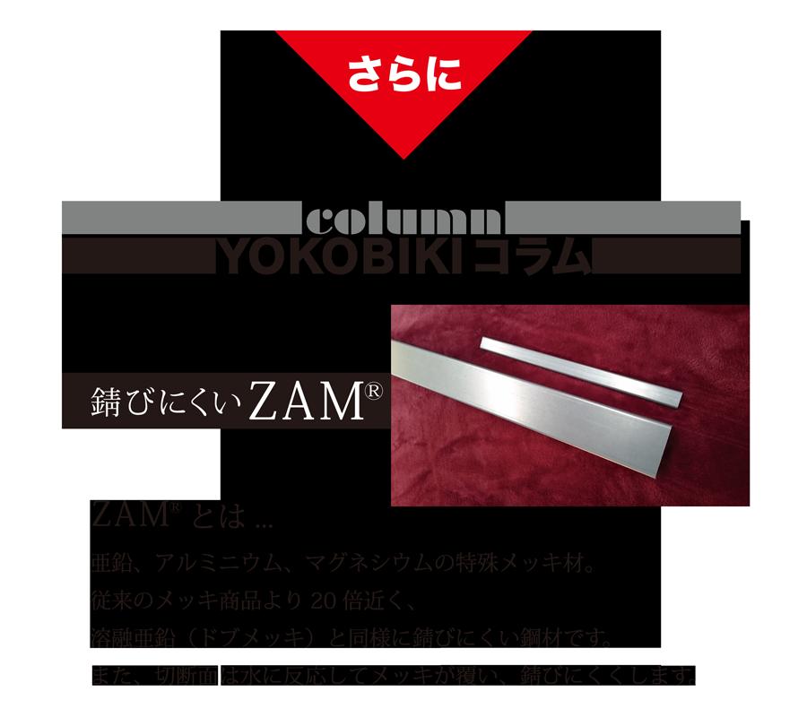さらに YOKOBIKI SHUTTER COLUMN 錆びにくいZAM(R) ZAM(R)とは... 亜鉛、アルミニウム、マグネシウムの特殊メッキ材。従来のメッキ商品より20倍近く、溶融亜鉛(ドブメッキ)と同様に錆びにくい鋼材です。また、切断面は水に反応してメッキが覆い、錆びにくくします。