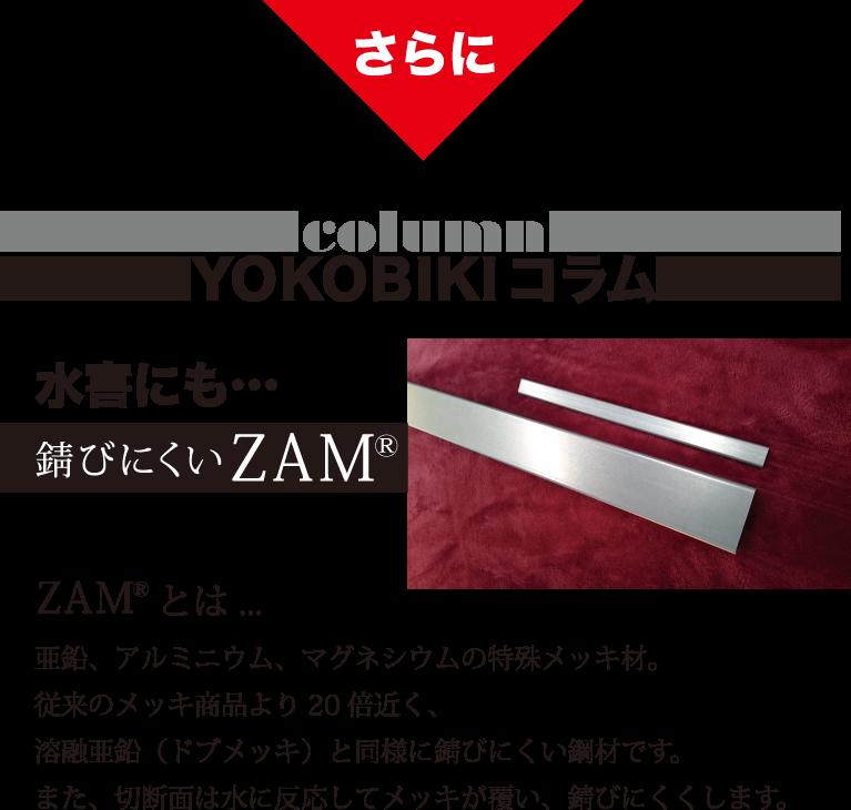 さらに YOKOBIKI SHUTTER COLUMN 水害にも… 錆びにくいZAM(R) ZAM(R)とは... 亜鉛、アルミニウム、マグネシウムの特殊メッキ材。従来のメッキ商品より20倍近く、溶融亜鉛(ドブメッキ)と同様に錆びにくい鋼材です。また、切断面は水に反応してメッキが覆い、錆びにくくします。