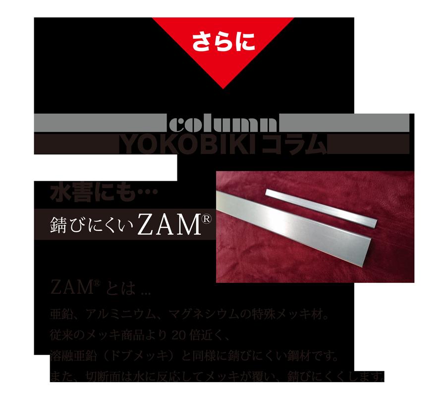 さらに YOKOBIKI SHUTTER COLUMN 水害にも錆びにくいZAM(R) ZAM(R)とは... 亜鉛、アルミニウム、マグネシウムの特殊メッキ材。従来のメッキ商品より20倍近く、溶融亜鉛(ドブメッキ)と同様に錆びにくい鋼材です。また、切断面は水に反応してメッキが覆い、錆びにくくします。